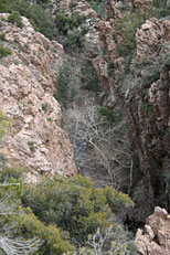 Haunted Canyon Hike: Image 5